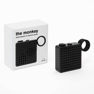 The monkey  -  palomar